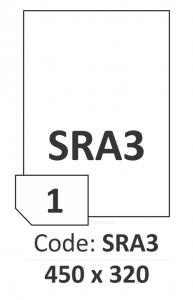 R0100.1123.Q.SRA3_small